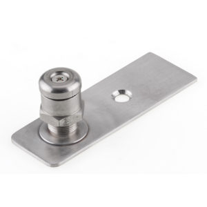 Adjustable Floor Pivot Insert for Swing Door